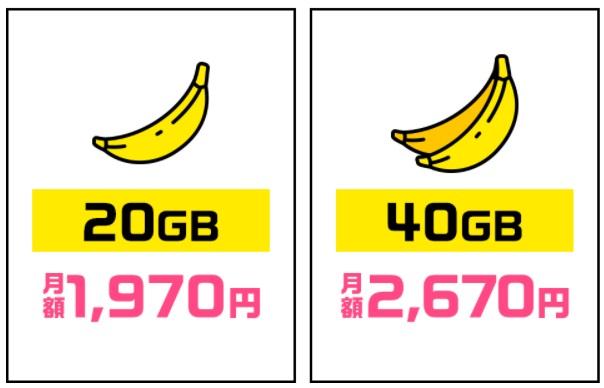 ギガゴリwifi 20GB